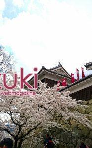 上田城跡の桜
