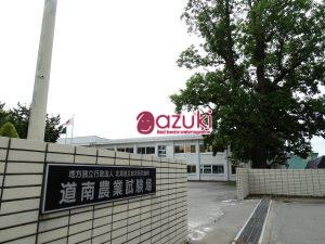 加藤先生が場長を務めておられる道南農業試験場。シンボルツリーのユリノキが建物の前にあります。撮影2018年。