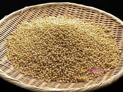 和菓子の原材料は生産地とともにある未来~白小豆を自社生産される 株式会社 虎屋