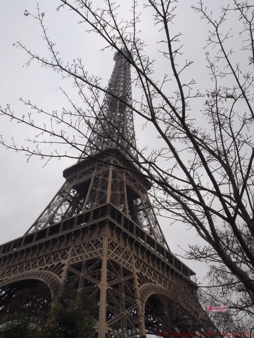 パリでの小豆のアトリエ参加報告会