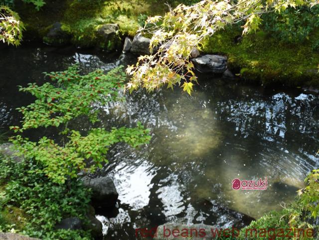 無鄰菴でazukiイベント開催しました。趣のあるお庭を2階からながめながら、明け放した窓からとてもいい風が吹いていました。この会場に決めたのは、京都のazuki編集部員で今回抹茶担当をしてくれた山本香菜さんが、「景色もごちそうです」と勧めてくれたからでした。ここにしてよかったー。
