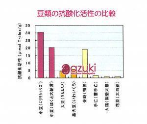 「豆類の抗酸化活性の比較」(原図 加藤淳 2012年)